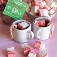 peppermint candy cane marshmallows