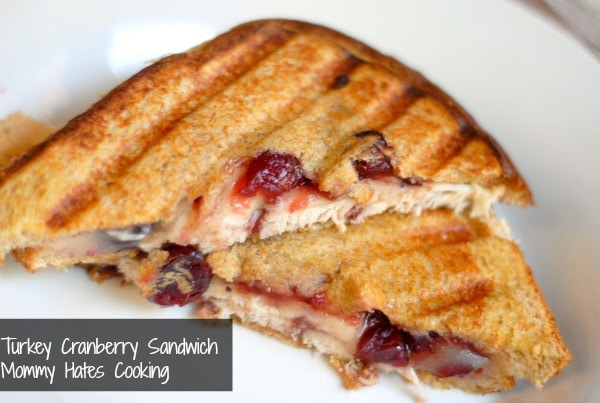 Turkey Cranberry Sandwich with Wonder Bread