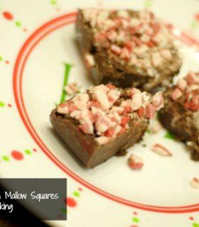 peppermint mocha mallow squares