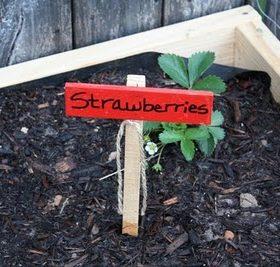Creative Garden Marker Idea