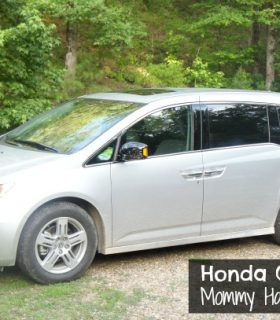 Vacation in the Woods & The Honda Odyssey