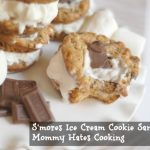 S'mores Ice Cream Cookie Sandwiches
