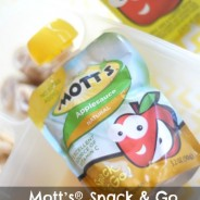 Lunch Box Solutions with Mott's® Snack & Go Plus Mott's® for Tots