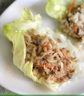 Veggie Lettuce Wraps & Simple Start