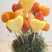 jungle-book-fruit-plant4