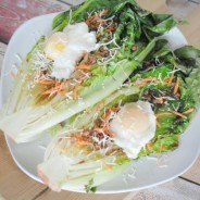 xgrilled-romaine-with-poached-eggs-photo.jpg.pagespeed.ic.EBqKEj2ulB