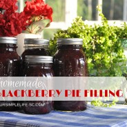 blackberry-pie-filling