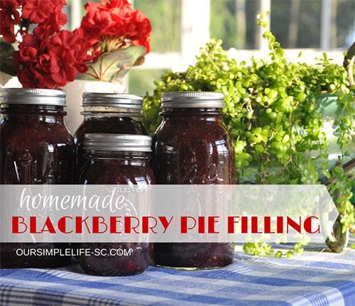 blackberry-pie-filling