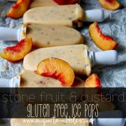 Stone Fruit & custard Gluten Free ice pops by anyonita nibbles