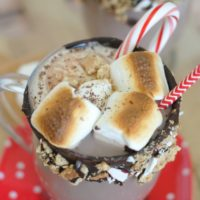 Peppermint S'mores Hot Chocolate Floats