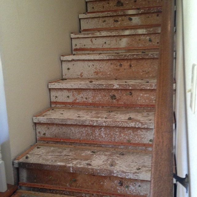 Taking Carpeted Stairs to Stained Wood I Homestead in the Heartland