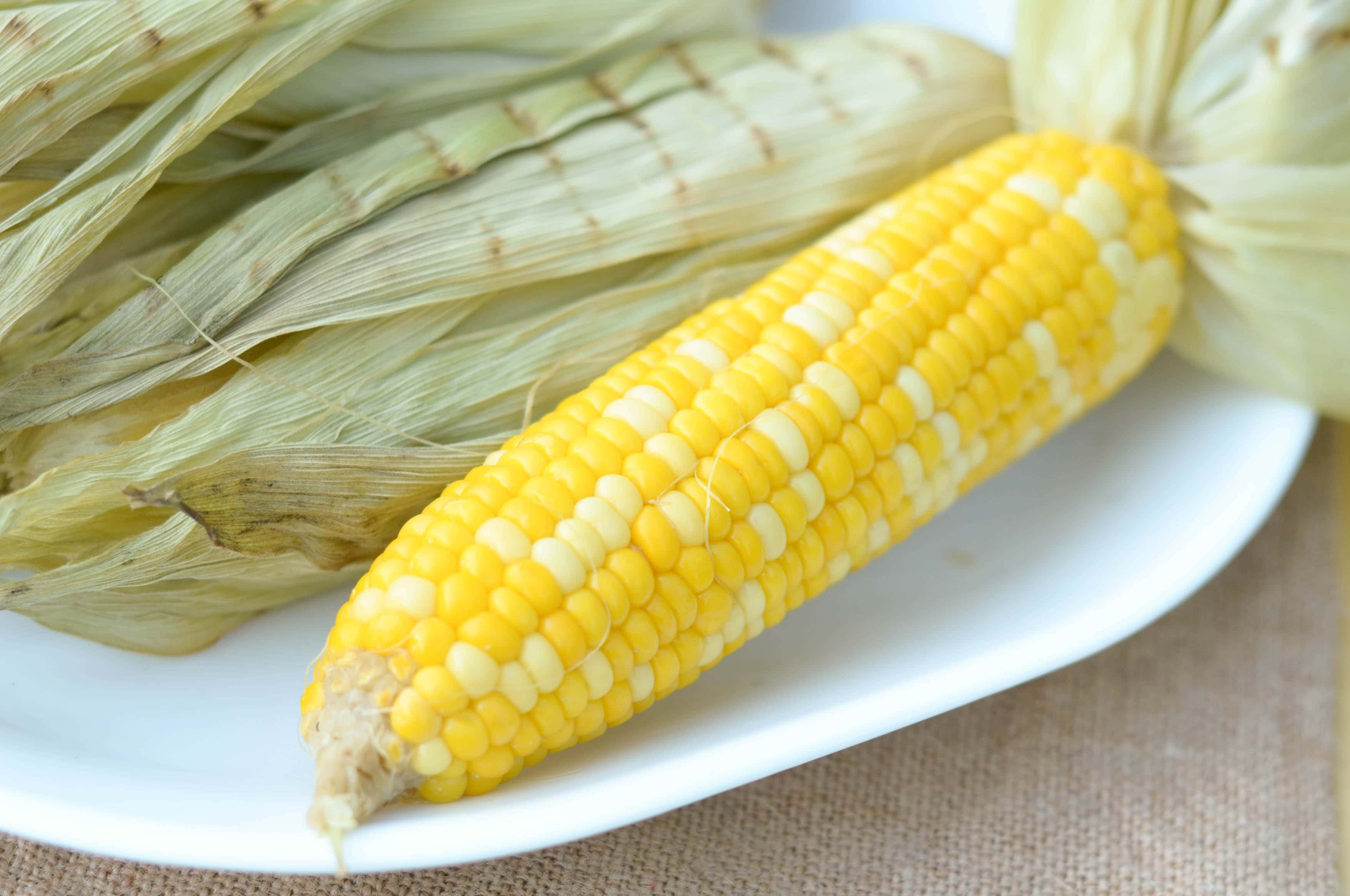 Asses porn sexy corn on the cob pussy exposed lips
