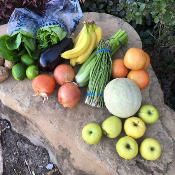 The Produce Gathering - a bi-weekly co-op that gives families an opportunity to buy fresh and organic foods for less!