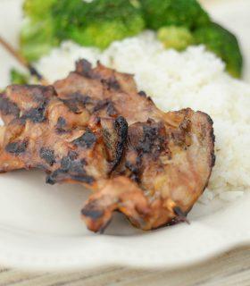 Gluten Free Chicken Teriyaki Skewers