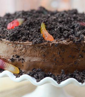 Dirt Worm Cake
