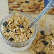 blueberry-morning-parfaits-7
