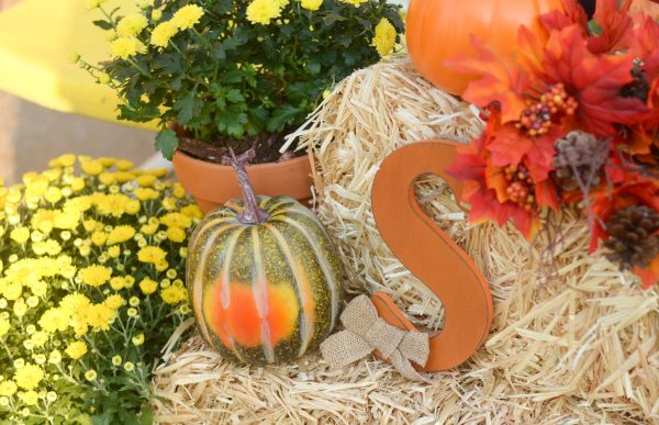 Decorating Tips for a Fall Front Porch #AtHomeStores #AtHomeFinds #sponsored