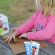 Refreshing Outdoor Fun with CAPRI SUN