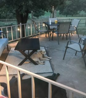 Bringing the Back Patio to Life