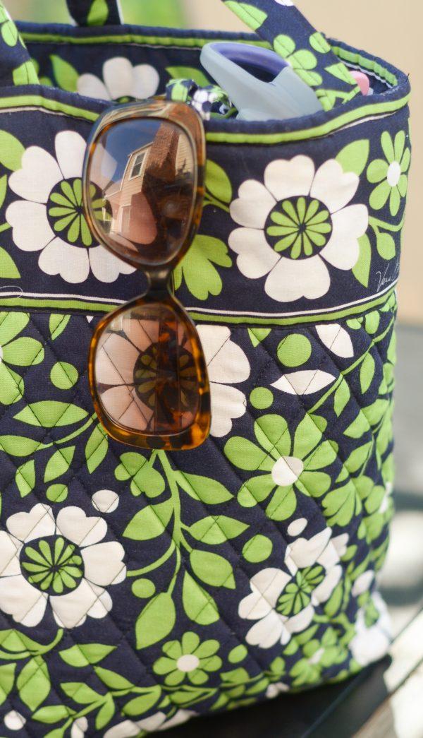 5 Healthy Beach Bag Snack Ideas