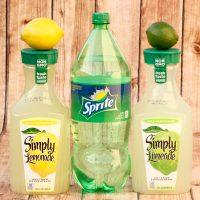 Sparkling Citrus Punch Recipe! {Just 3 Ingredients}
