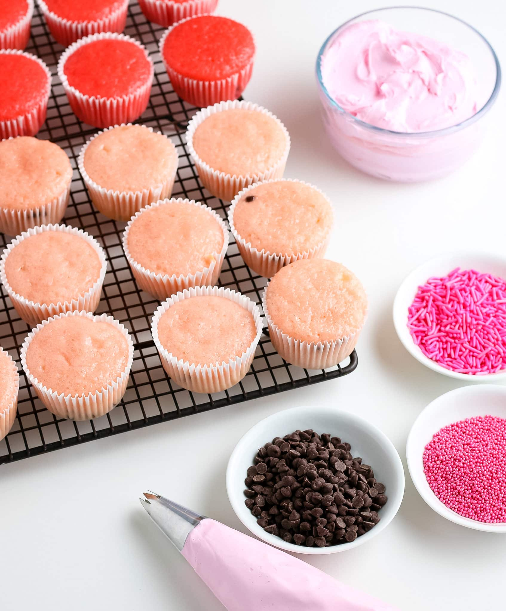 20+ Cupcake Recipes for Summer